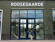 Gevelreclame verlichte doosletters Rotterdam